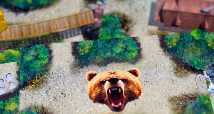 bear_valley_cover01